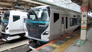 踊り子 東京駅発車 E257系