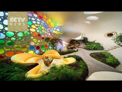 Architecture exhibit showcases 'organic' buildings in Mexico City