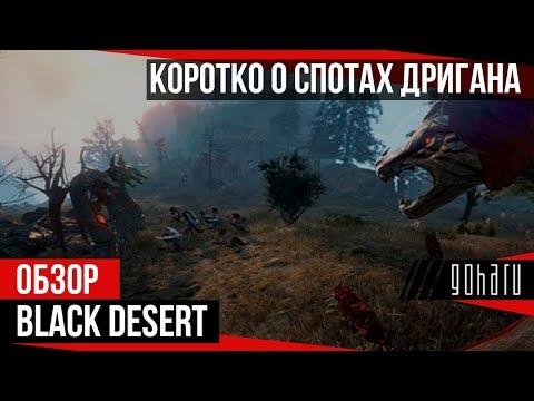 Black Desert - Коротко о спотах Дригана