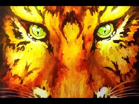 Tigres del norte