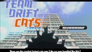 Team Drift Cats • Unity3D Games • Mopixie.com