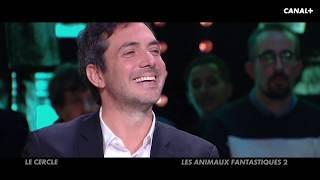 Débat sur Les Animaux fantastiques 2 - Analyse cinéma