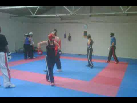 Great Britain Martial Arts Academies Instructor's Training