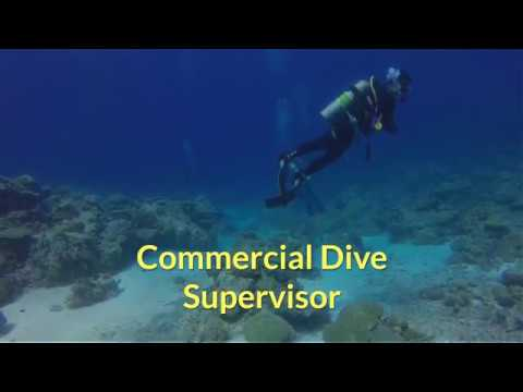 Commercial Dive Supervisor - Maritime Opinions