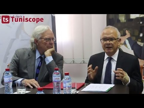 Intervention de M. Radhi Meddeb - Le TAEF finance la société CFE Tunisie