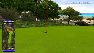 Golden Tee Great Shot on Turtle Island!