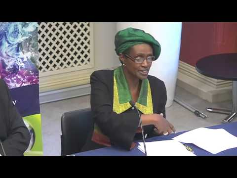'African Futures: navigating a profound transition' - panel discussion