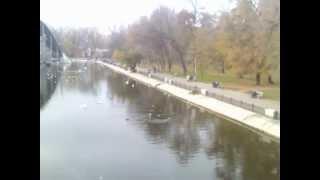 Днепропетровск, парк Глобы (Чкалова) - озеро(Днепропетровск, парк Глобы (Чкалова) - озеро в парке Чкалова, ноябрь 2012., 2012-11-20T16:52:40.000Z)