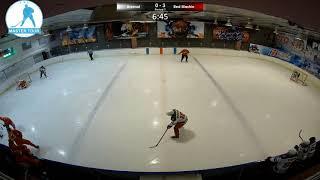 Шорт хоккей Мастер-Тур матч Арсенал Ред Машин