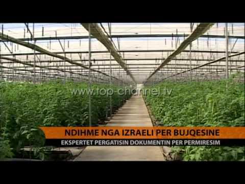 Ndihmë nga Izraeli për Bujqësinë - Top Channel Albania - News - Lajme