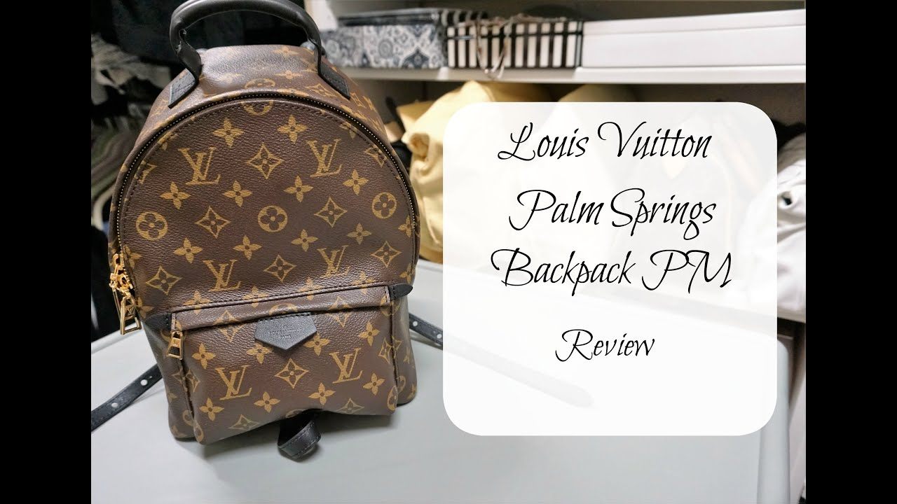14e5b0448826 Louis Vuitton Palm Springs Backpack PM - Review - YouTube