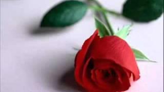 ♥SaB RiShTe NaAtE Main chor dun,,,,,by rahat fateh ali khan,,........(up laoding by Mairaj mughal)