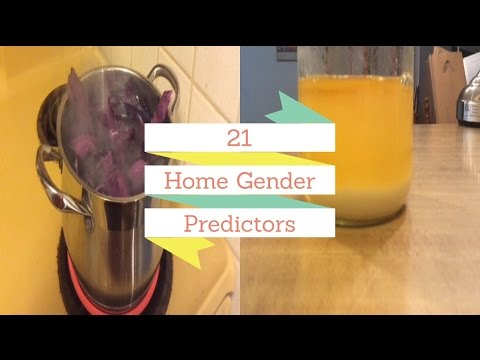 21 HOME GENDER PREDICTORS