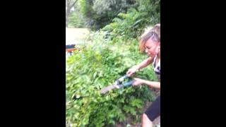 ANGRY BLACK WOMAN TAKIN IT OUT ONTREES