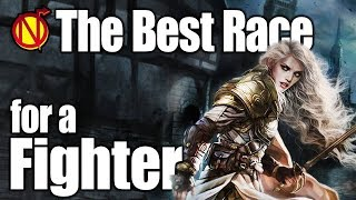 D&D Fighter- Best Race in 5th Edition Dungeons and Dragons