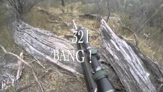 Hunting NSW 2016 Gopro Goats Pigs Deer
