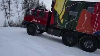 dikiy Tatra birth