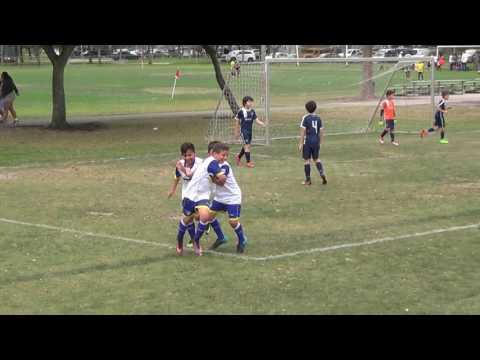 Davie United Sharks Blue (2) vs KSC 2006 White (3)