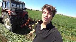 Tarım Vlog #33    Yonca Biçiyoruz, Huzurlu işler