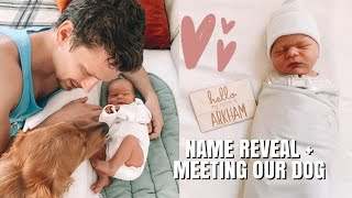 NEWBORN NAME REVEAL + MEETING OUR DOG!