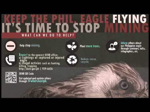 Keep the Philippine Eagle Flying, It's Time to Stop Mining