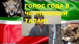 Юнный талант в Чечне!!Алиев Юсуп Я Волк !Песня года в России