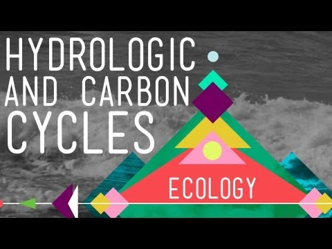 The Hydrologic and Carbon Cycles: Always Recycle! - Crash Course Ecology #8