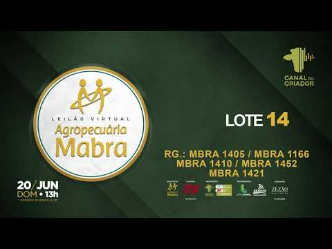LOTE 14 1405 1166 1410 1452 1421
