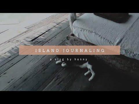 Camel (Midori) Traveler's Notebook for Journaling in Tiger Island