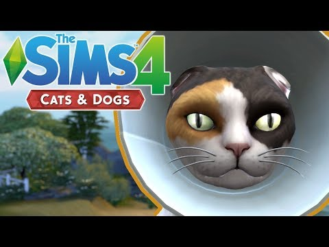CONE OF SHAME - The Sims 4 Cats and Dogs | Episode 5 |