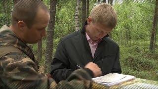 Подготовка кадров для лесной отрасли РФ