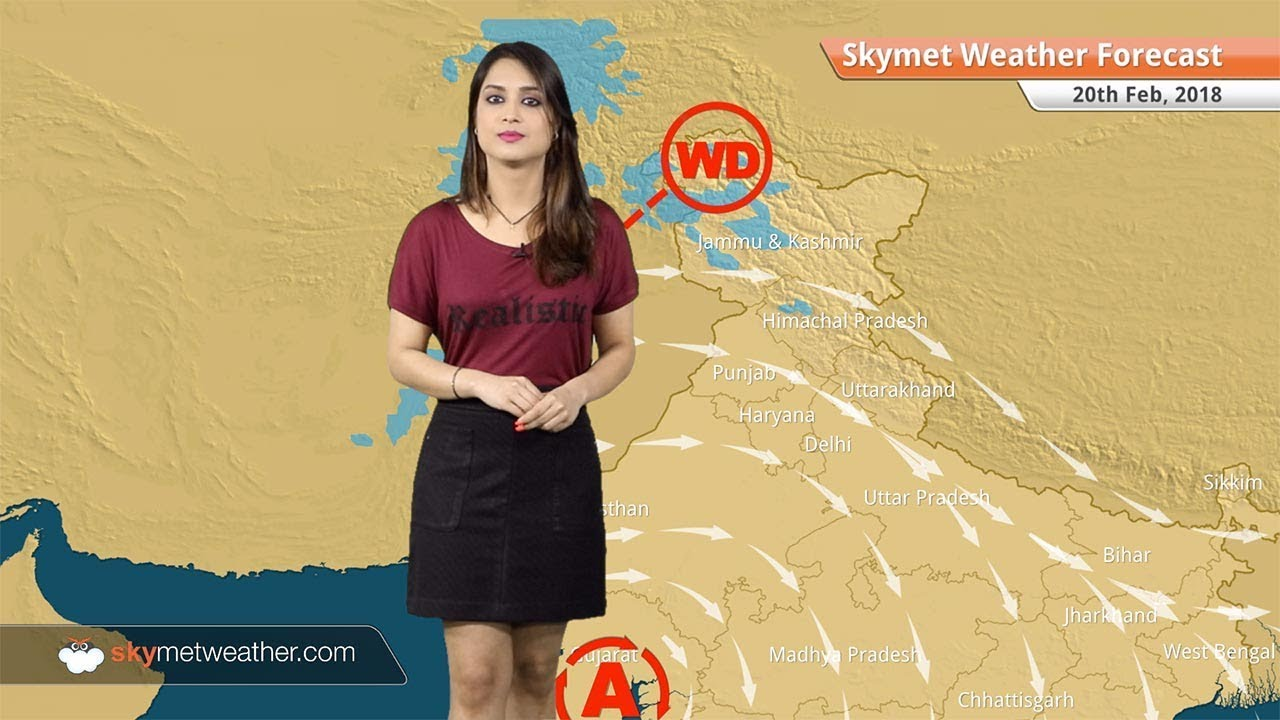 Weather Forecast for Feb 20: Warm day in Delhi, Lucknow, Mumbai