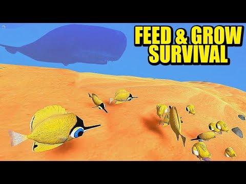 ALIMENTANDO MIS PECECILLOS (MODO SURVIVAL) FEED & GROW: FISH | Gameplay Español