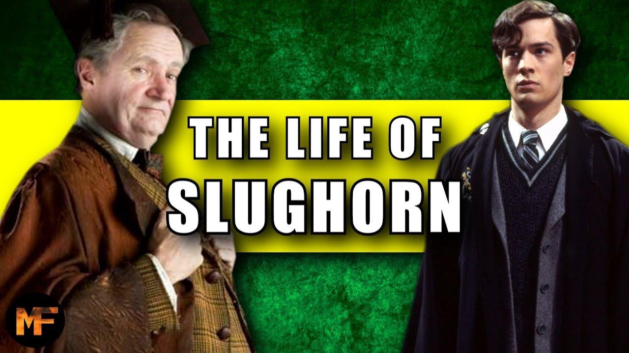 The Life Of Horace Slughorn Harry Potter Explained Hogwarts Professors Harry Life