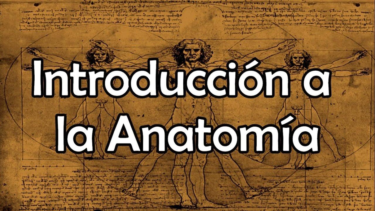 Introducción a la Anatomía - YouTube