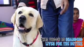 BOLT | Dogs of Bombay