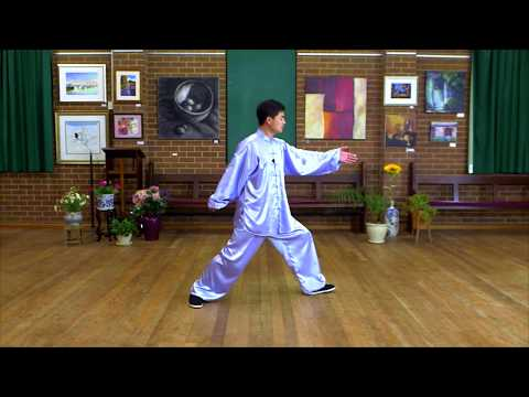 Tai Chi 40 Form Step By Step Instructions Paragraph 5 Youtube