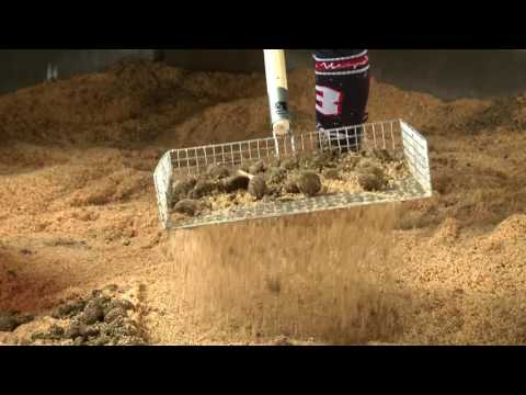 Stable Mate Sieve Video 270716
