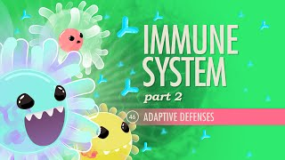 Crash Course: Anatomy & Physiology: Adaptive Immune Systems thumbnail