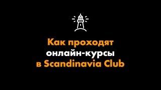 Как проходят онлайн-курсы в Scandinavia Club?