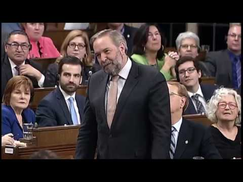 "Tom mulcair ""we could replace Trudeau with a cardboard cut out"""