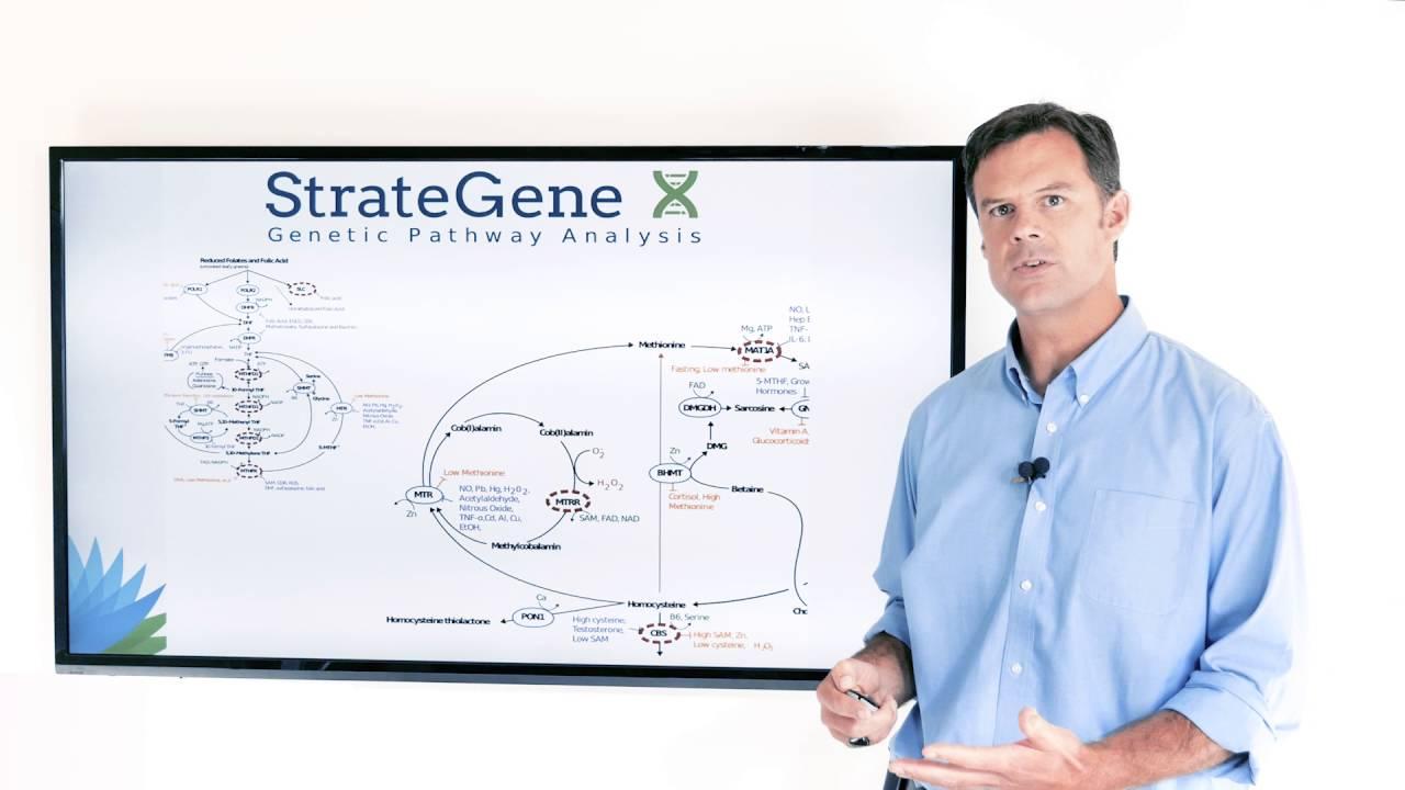 StrateGene: Genetic Report by Dr Ben Lynch