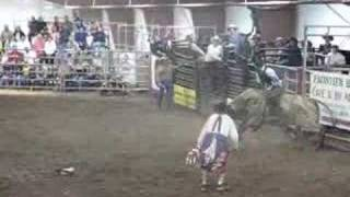 Good job Bullfighter
