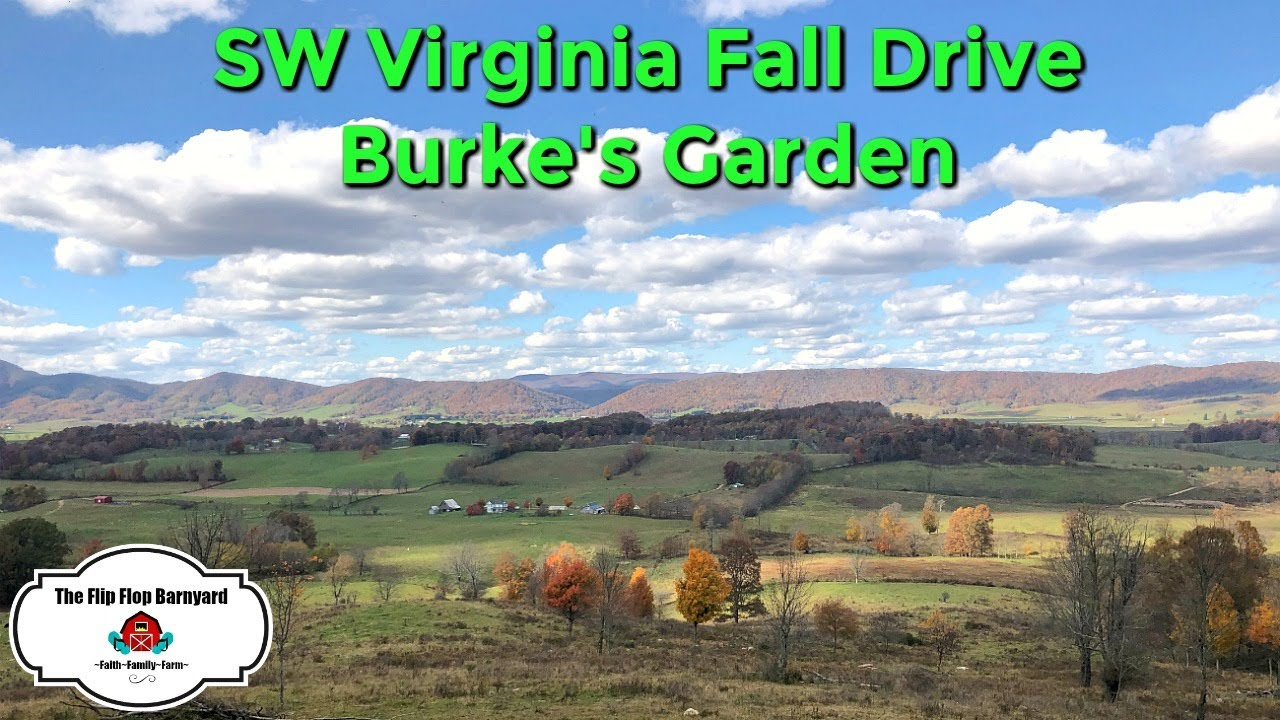 SW Virginia Fall Drive to Burke's Garden | DITL Large Family