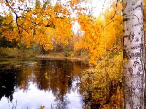 осень красивая природа - YouTube