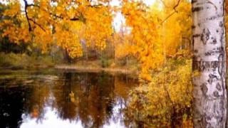 осень красивая природа