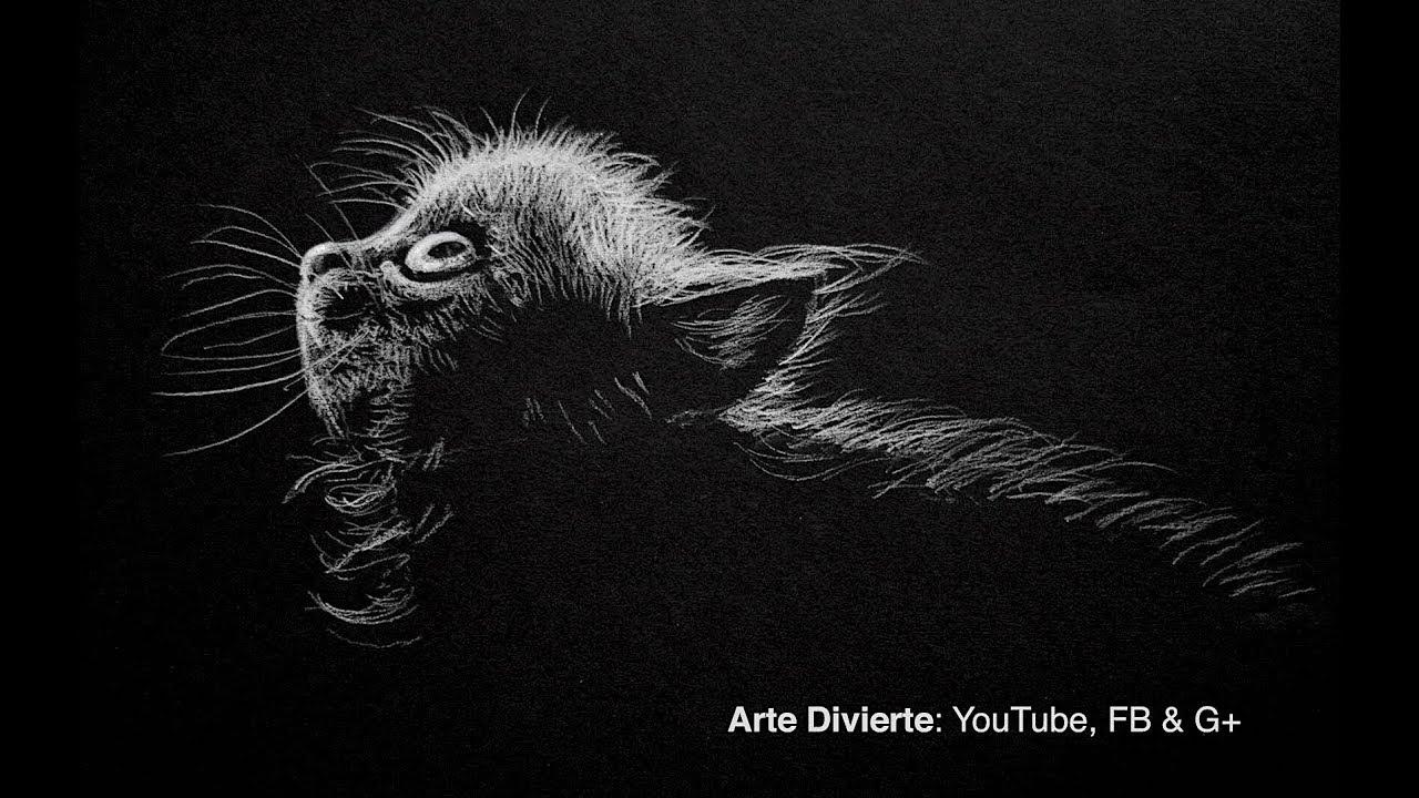 Cómo dibujar un gato - Blanco sobre negro - Narrado - YouTube