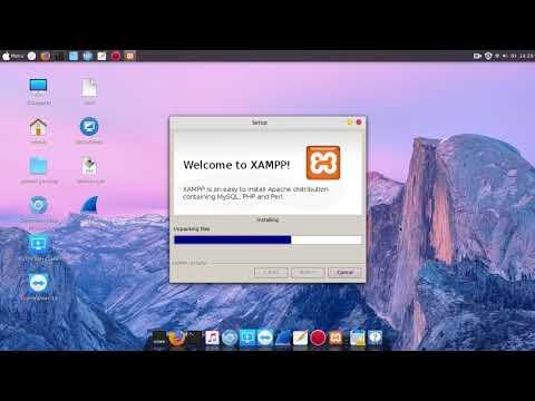 install xampp linux mint 19