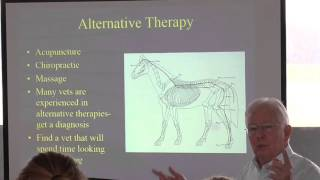 fei and usef rules on drugs and therapies before competition