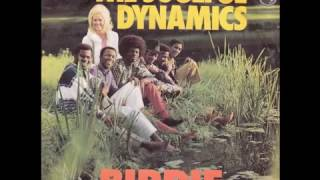 Watch Soulful Dynamics Birdie video